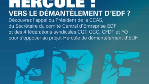 HERCULE : Vers le démantèlement d'EDF ?